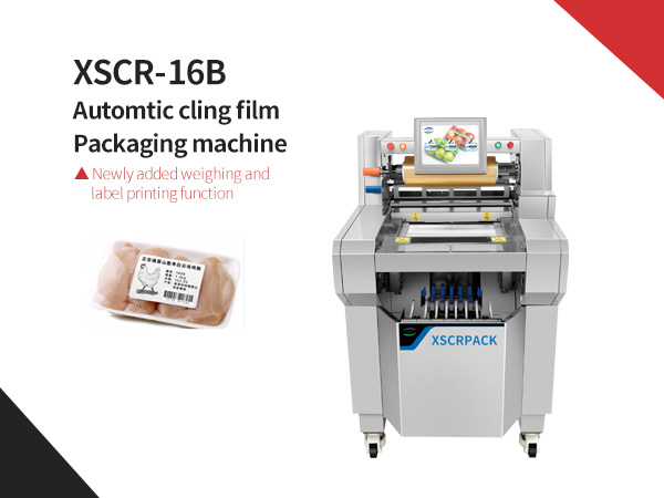 XSCR-16B Automtic cling film packaging machine